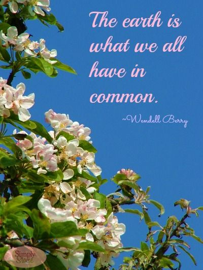 Earth Day Quotes Earth Day Quotes  Pinterest  Earth Wisdom And Inspirational