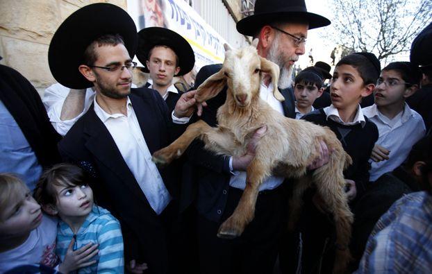 A Gerusalemme gli ebrei ortodossi si preparano alla Pasqua