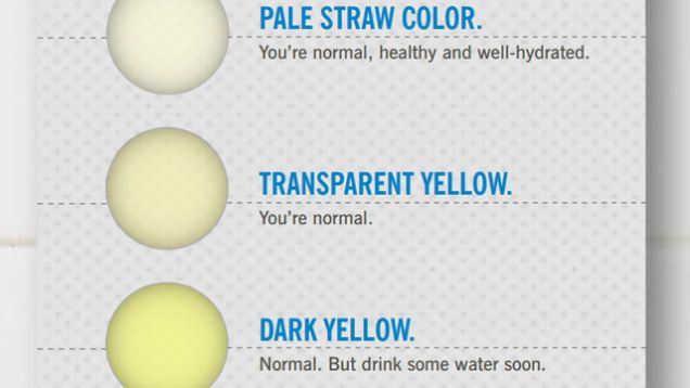 What The Color Of Your Pee Says About Your Health  Cleveland