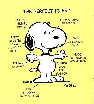 Pinterest Funny Quotes | Favorite and Funny Quotes! / Snoopy ...