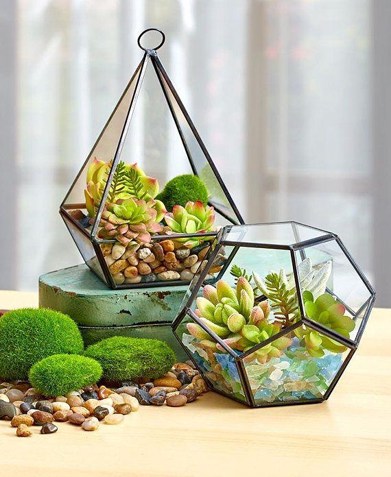 Nursery Indoor Plants Near Me: Terrarium For Air Plant- Orb Or Teardrop Shap -Terrarium