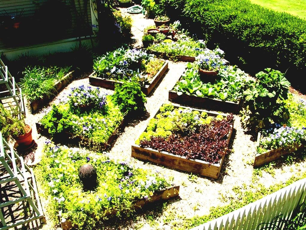 Die Besten Gemuse Garten Design Ideen Auf Pinterest Zuteilung Gartendeko Small Home Vegetable Garden Ideas Architectural Plants Home Vegetable Garden