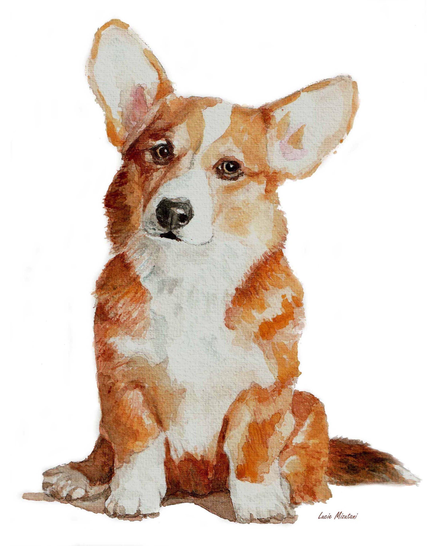 Cute Corgi Puppy Corgi Drawing Dog Art