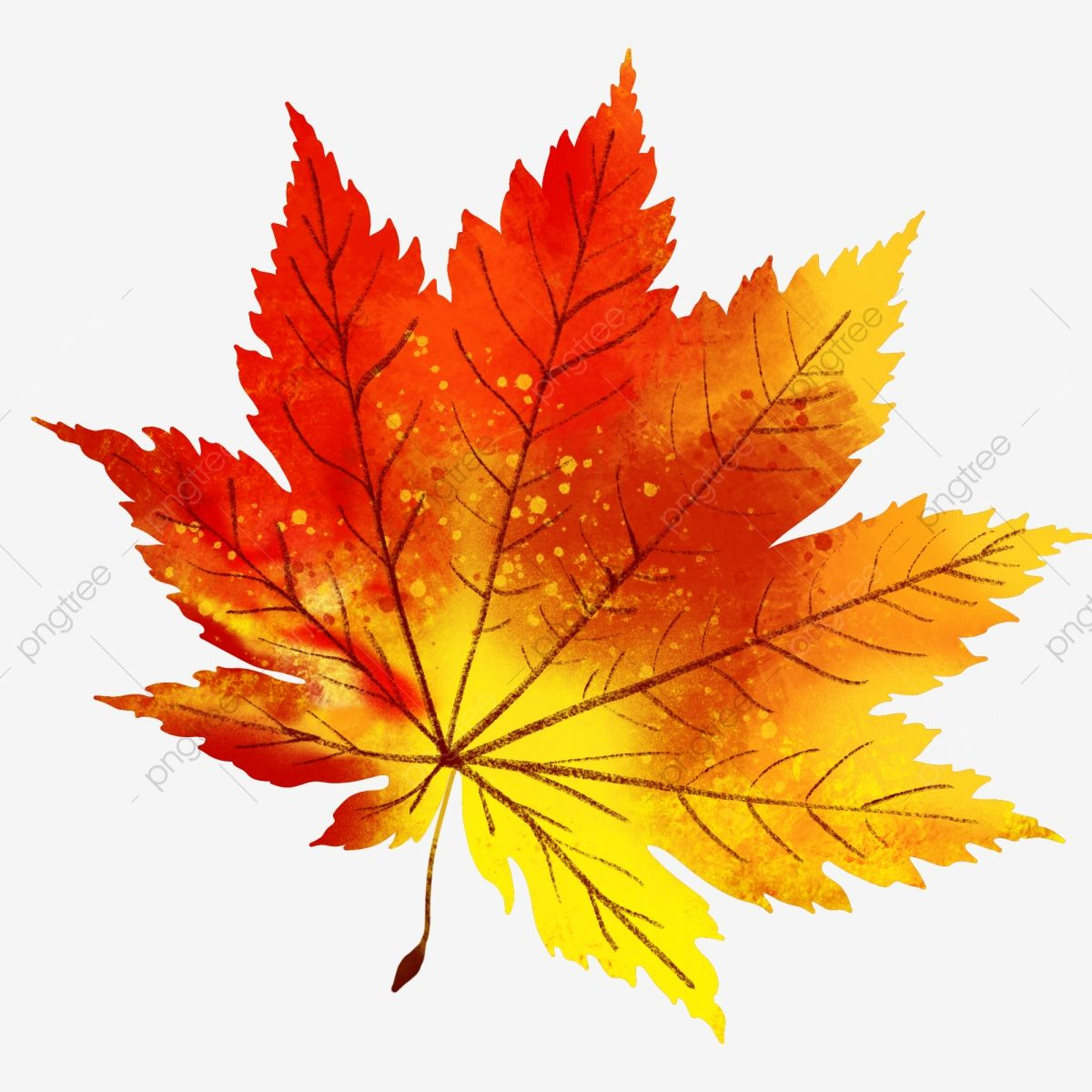 Autumn And Maple Leaves Drawn Plant Simple Nature Clipart Autumn Autumn Leaf Png Transparent Clipart Image And Psd File For Free Download Maple Leaf Drawing Leaf Drawing Fall Leaves Drawing