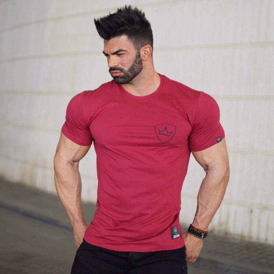 Blood Sweat Tears Mens Workout Gym Tee Bodybuilding Fitness Shirt