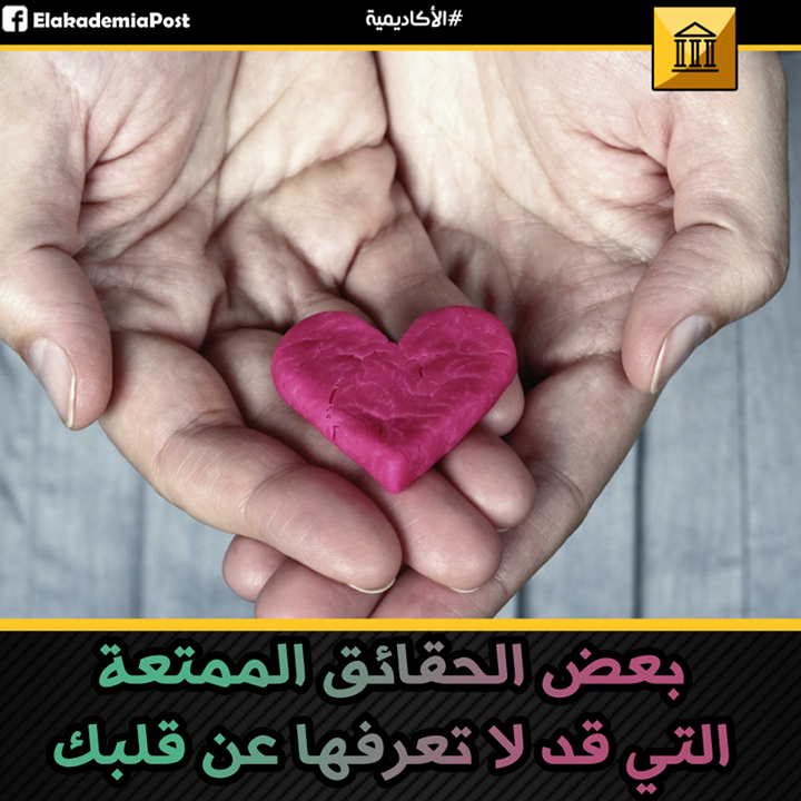 القلب هو جزء من نظام الدورة الدموية في جسم الإنسان حيث يتكون من الأذينين البطينين الصمامات والشرايين والأوردة المخت Convenience Store Products Convenience Store