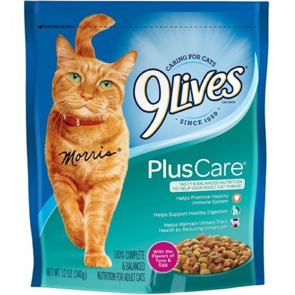 9lives Plus Care Many Thanks For Visiting Our Photograph This Is Our Affiliate Link Catfood Dry Cat Food Cat Food Cat Nutrition
