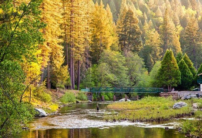 Yosemite rv camping with hookups