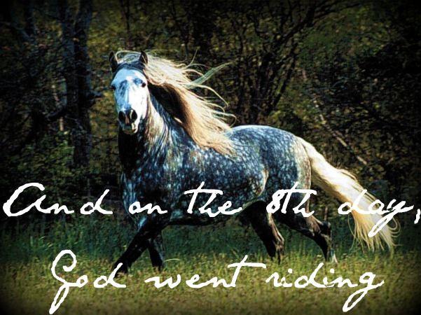#horseyyy