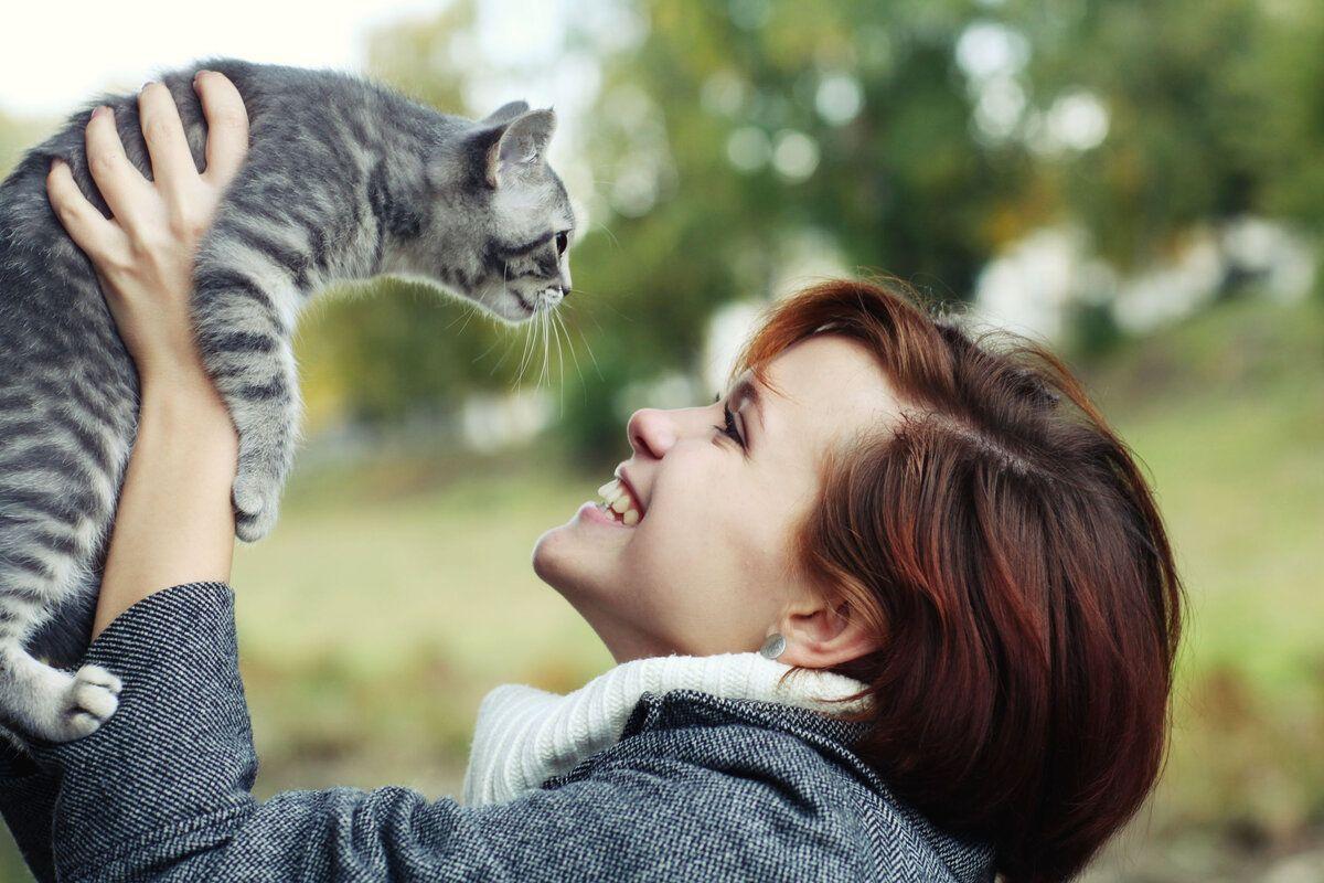 картинки человек с кошками
