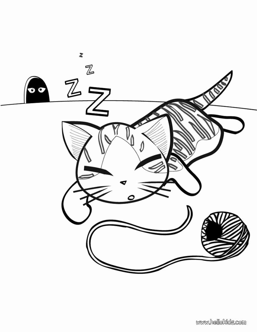 Cute Cats Coloring Pages Lovely Cute Kitty to Colour