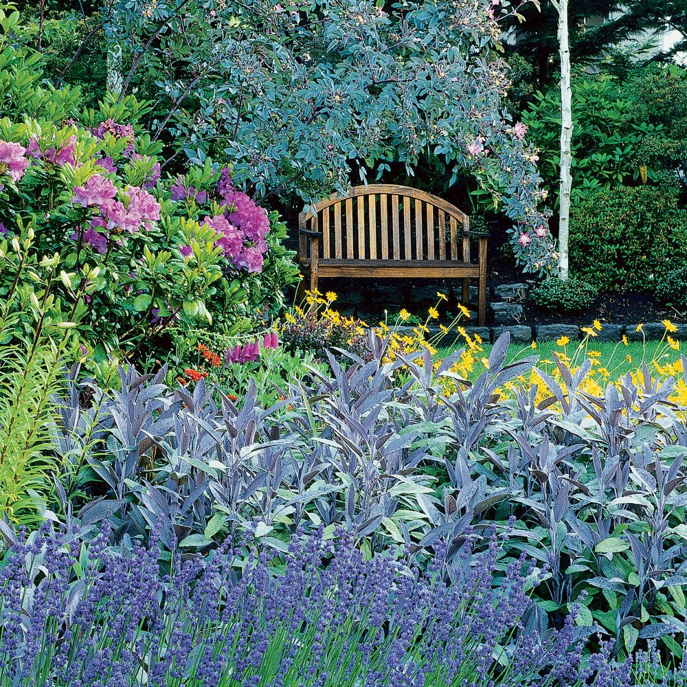 Your Guide To Growing An English Cottage Garden In The