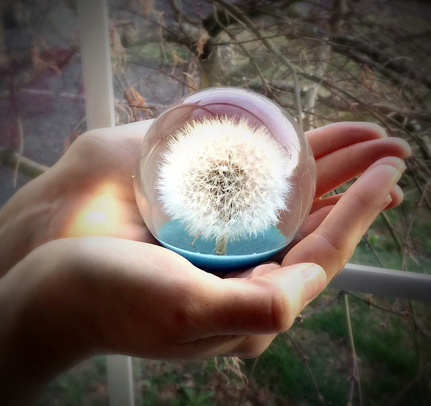 A personal favorite from my Etsy shop https://www.etsy.com/listing/271359752/dandelion-paperweight-real-large