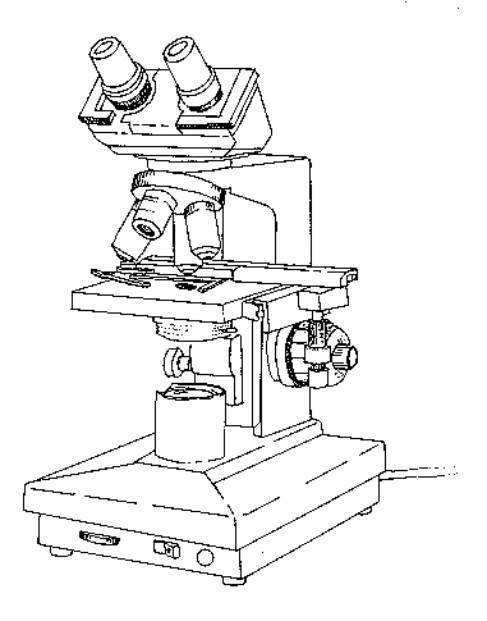 microscopio  u00f3ptico