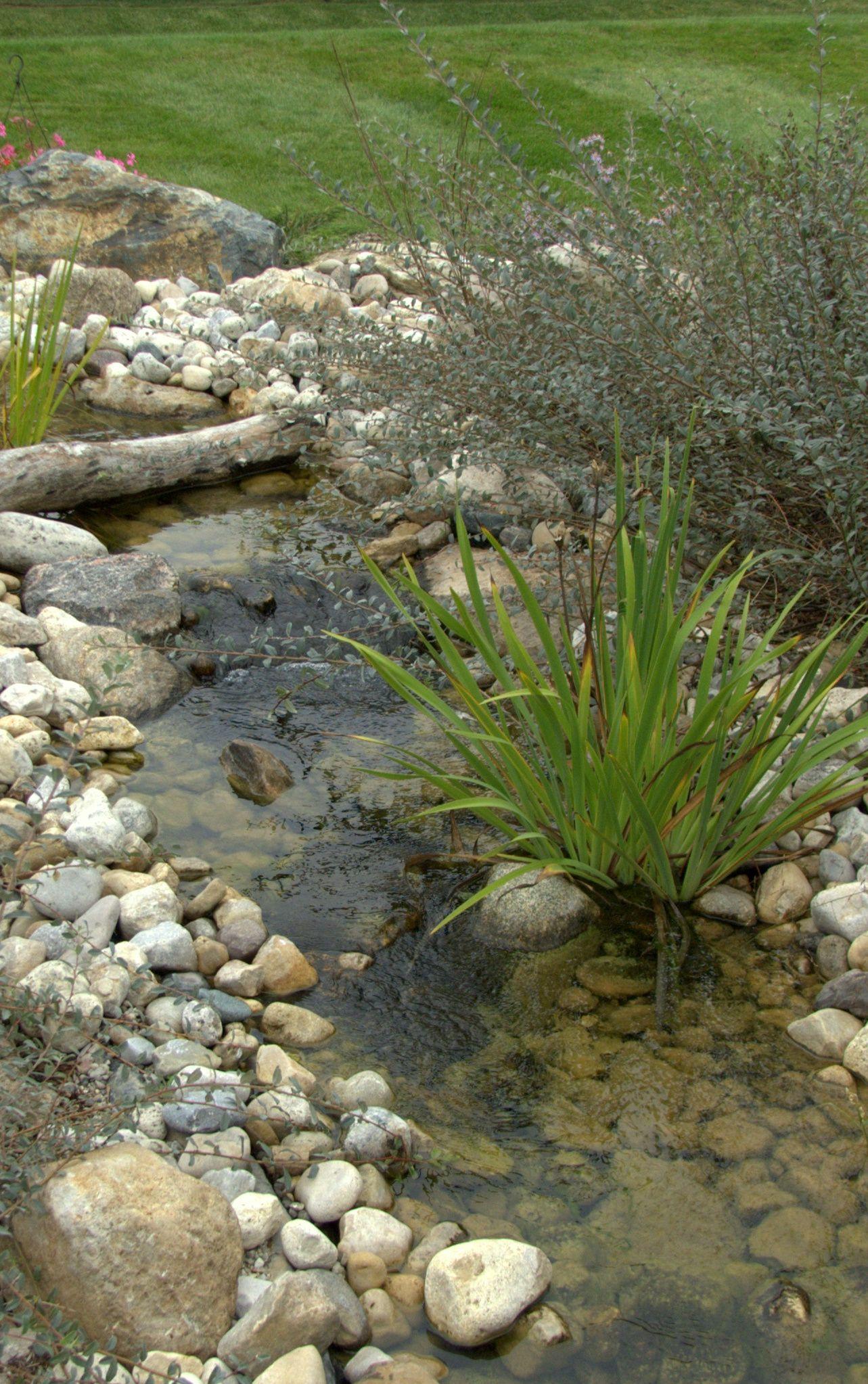 Residential backyard pond 4 ponds streams for Koi pond rocks