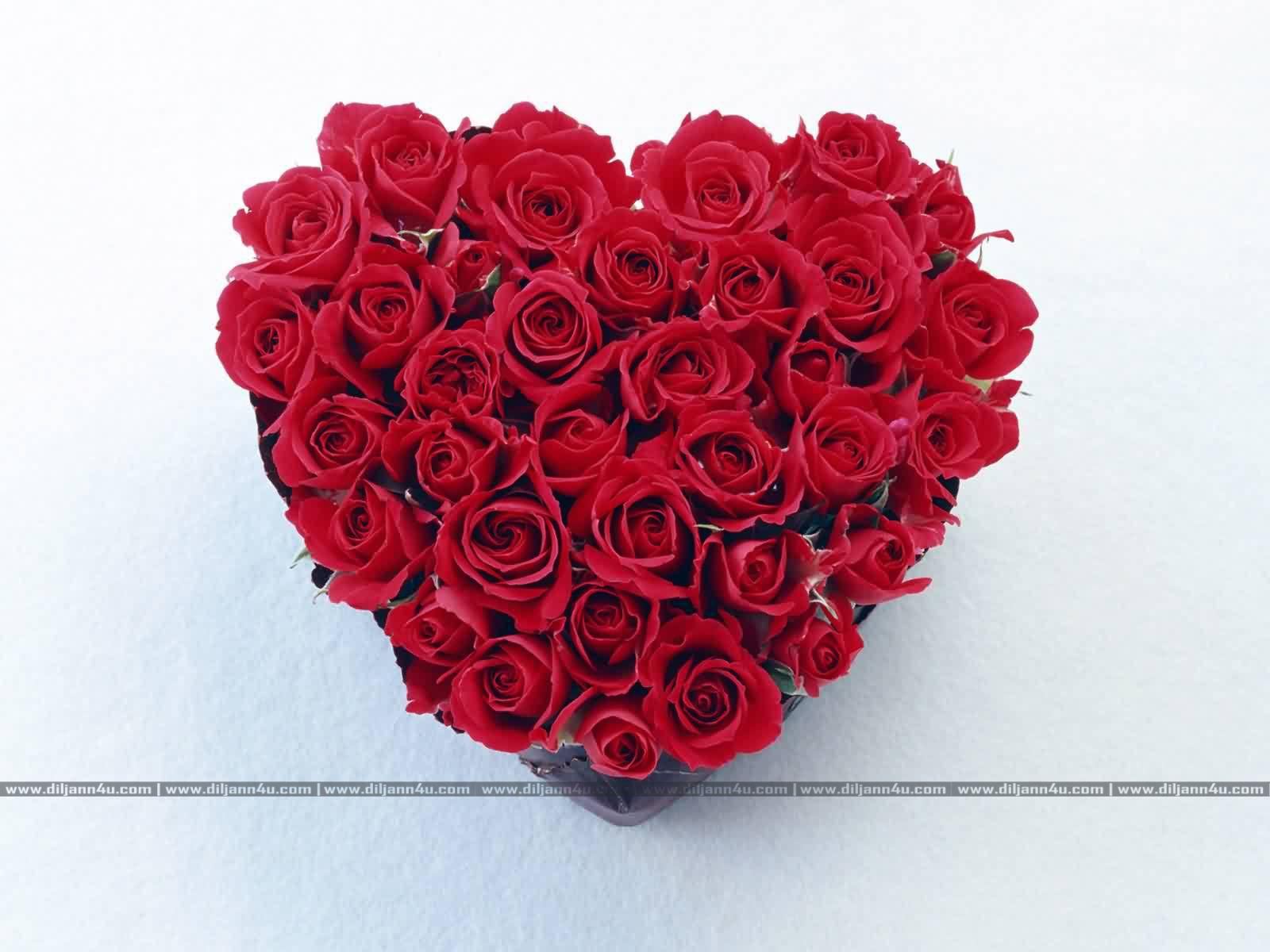 Beautiful Heart Love Beautiful Hearts Diljann4u 04