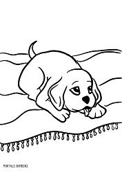 Cani Da Colorare Stampare.Giocate E Colorate Con I Nostri Cagnolini Da Stampare Stampe