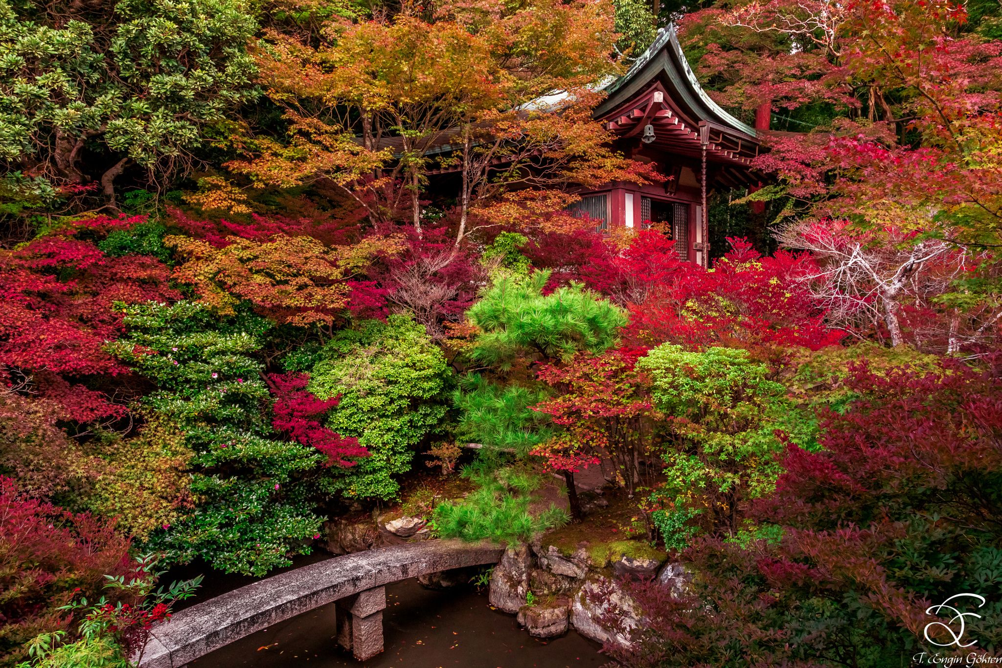Contemplation - Japanese Sacred Gardens are one of the best places ...