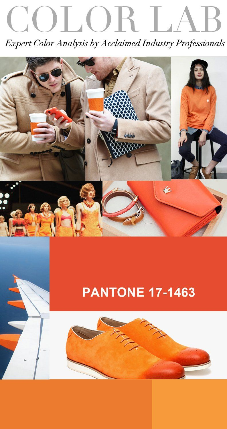 Trend Council:  Color Lab PANTONE 17-1463