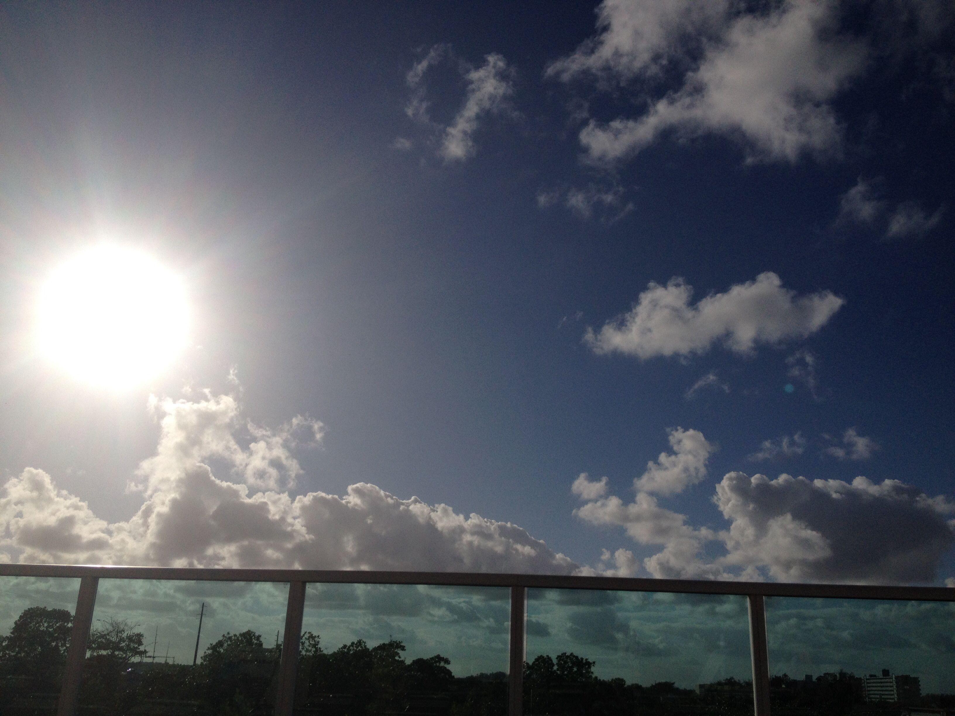 Sunny day in Sunny