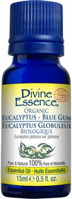 Divine Essence Eucalyptus Blue Gum Organic Essential Oil - The Niche Naturals