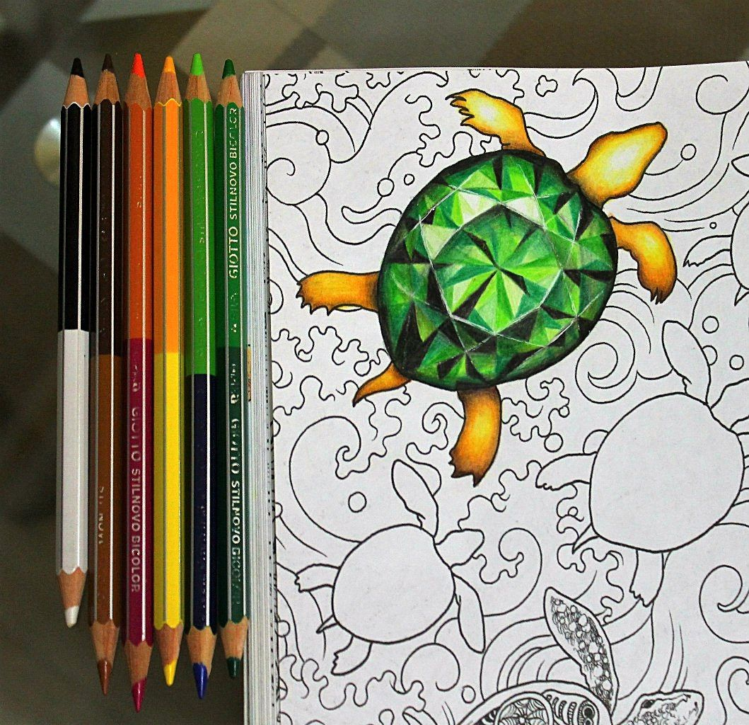 Turtle Jew Animorphia Giotto Coloring Books Colored Pencils