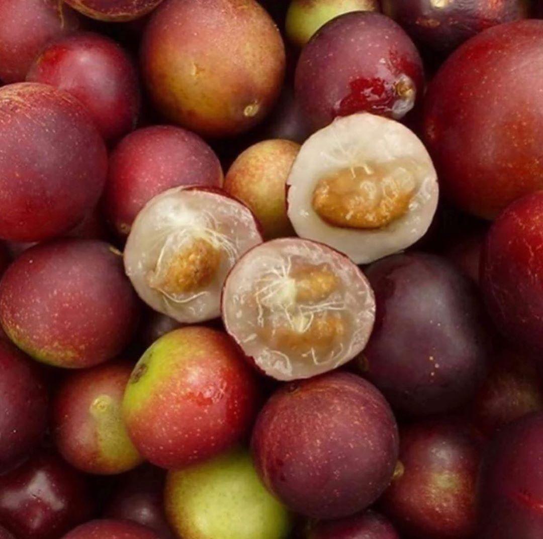 Help With Sagging Skin Buy Camu Camu Extract Here Follow Richorganicbeautyshop Www Richorganicbeauty Shop The Ca In 2020 Fruit Antioxidants Vitamins