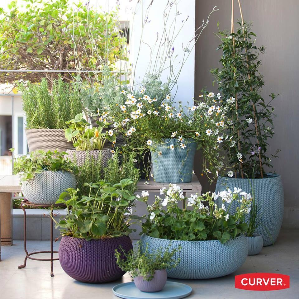 52 Astounding Indoor Garden Ideas To Beautify Your Interiors ...