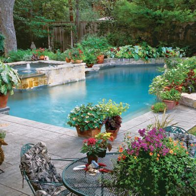 Pool side container gardens