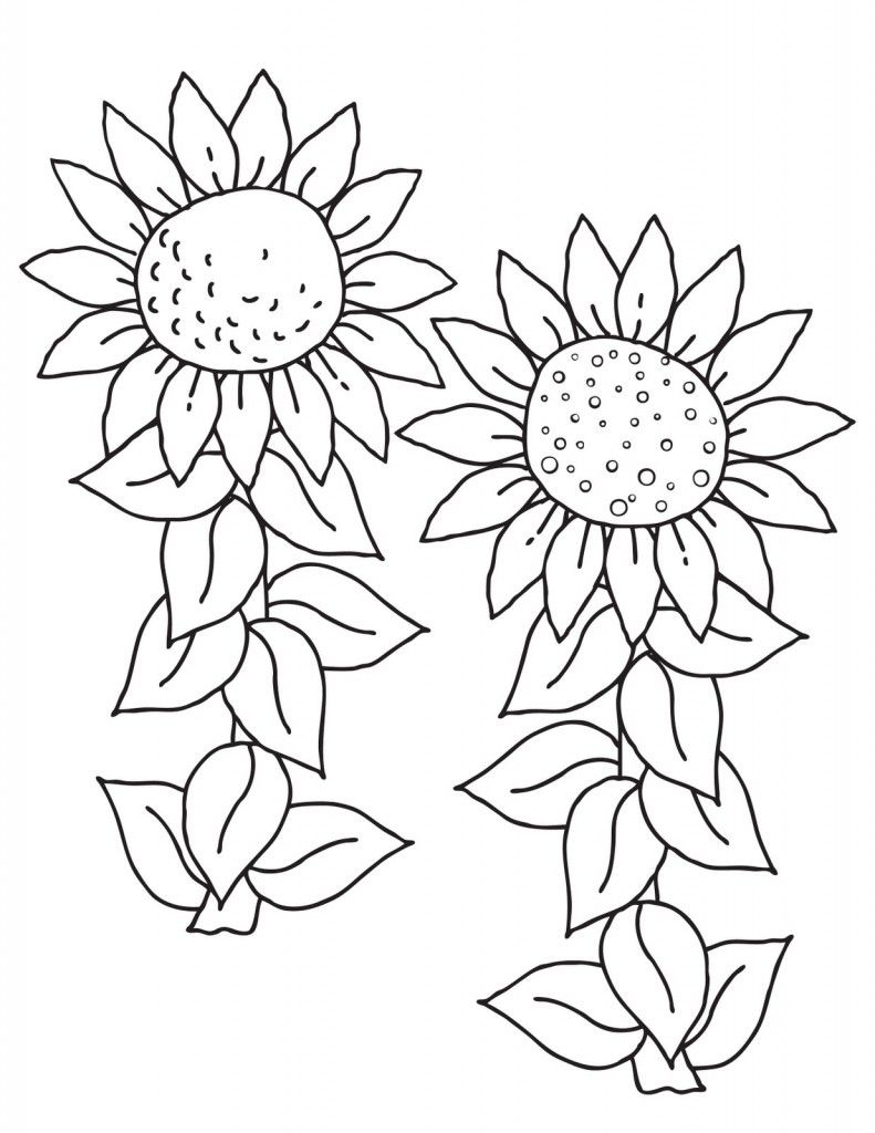 Free Printable Sunflower Coloring Pages For Kids | Digital Stamps ...