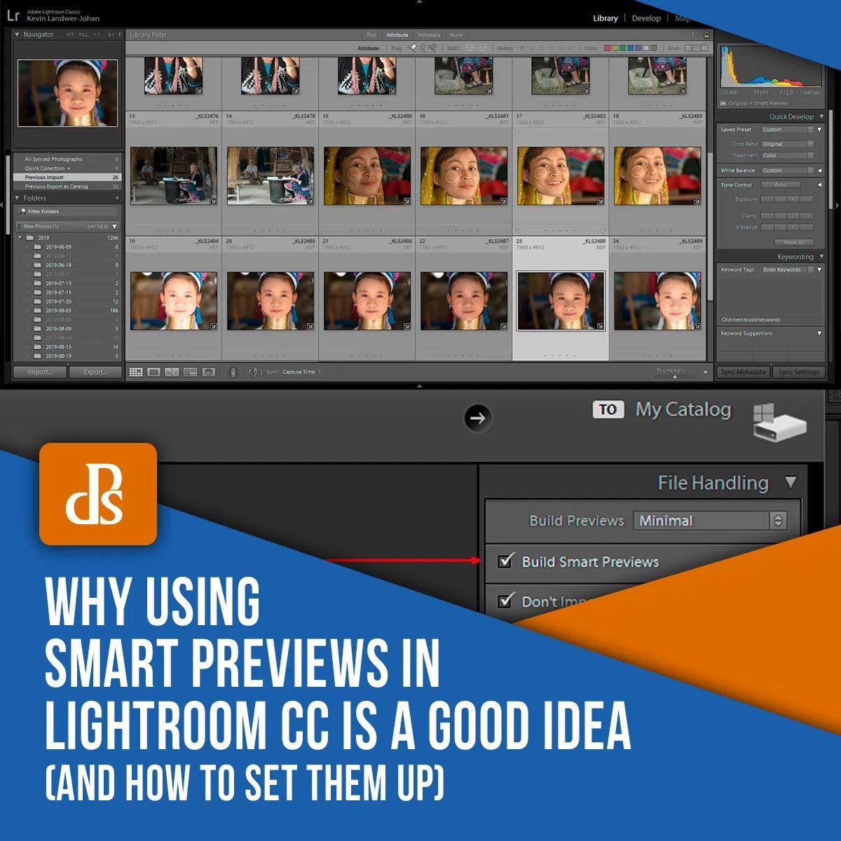 Lightroom smart previews vs standard previews