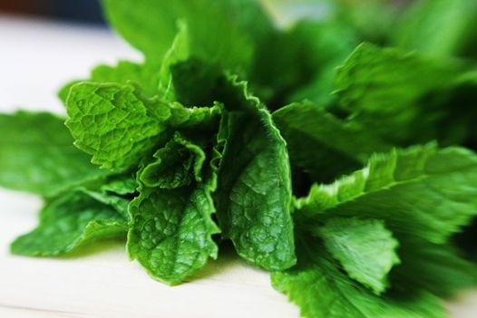 The 10 Best uses for Mint (aside from tea and lemonade) - a very cool blog too!