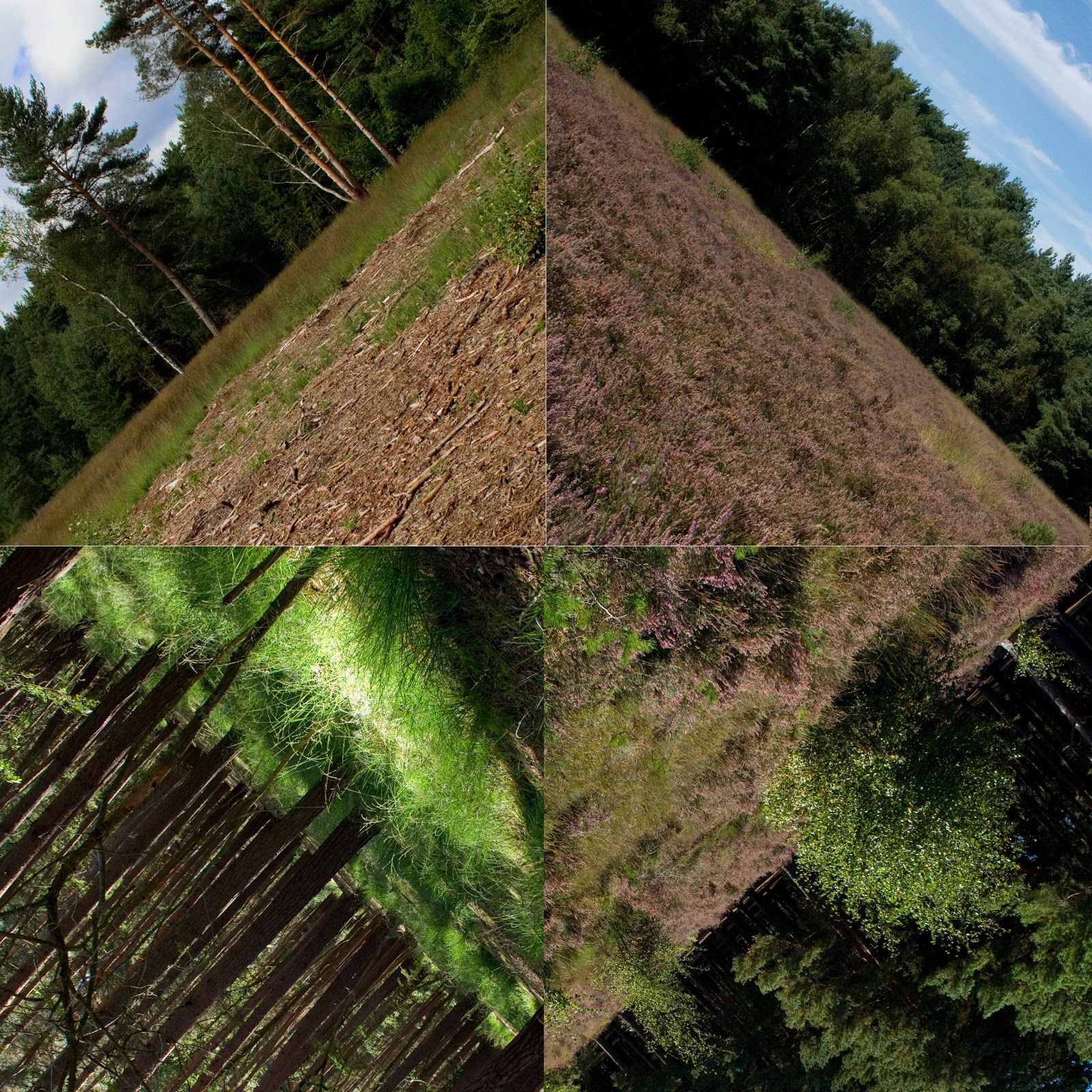 Doug Aitken Photography Bing Images Landscape Photography Creative Landscape Geometric Photography