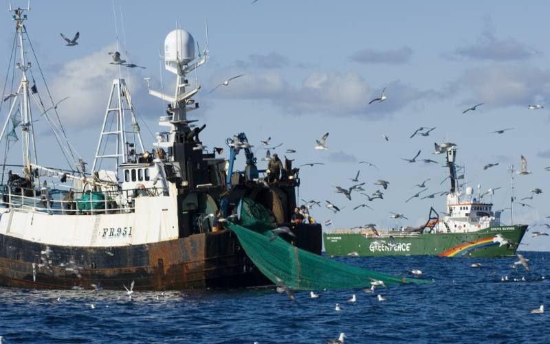 portugal pesca - Pesquisa Google