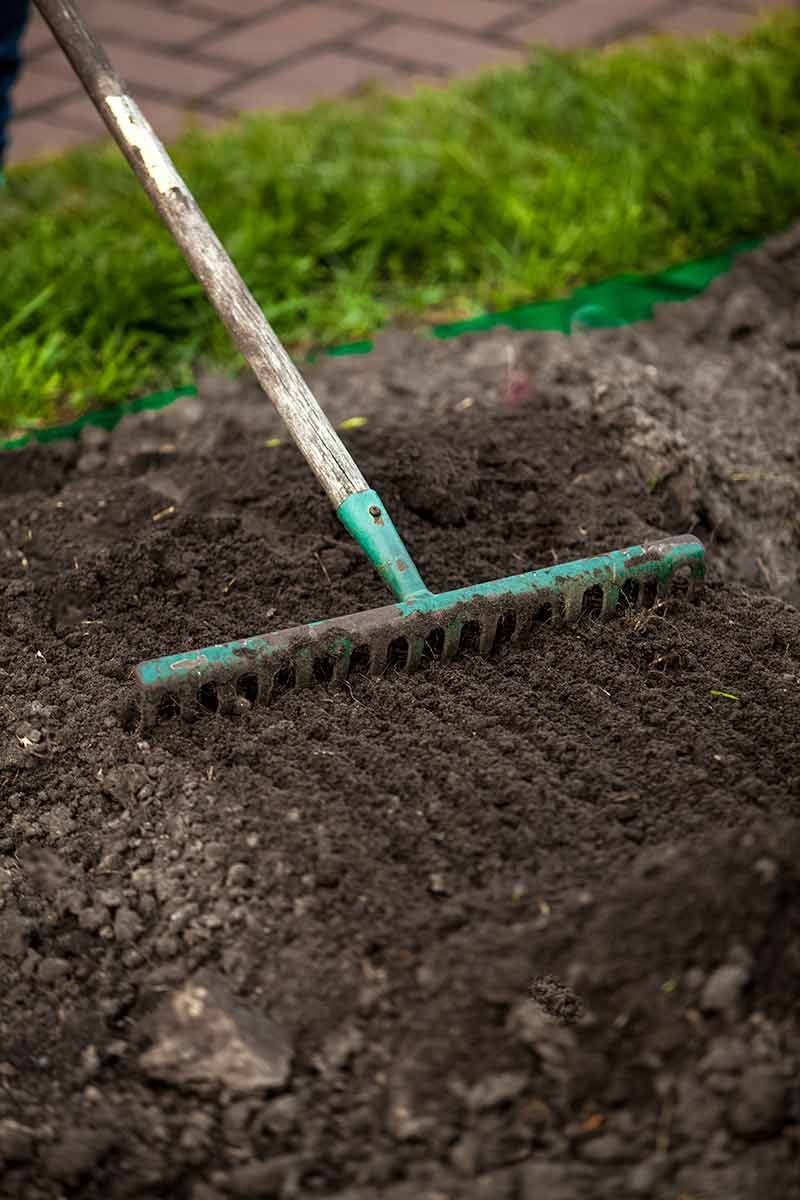 How to plant grass seed planting grass planting grass