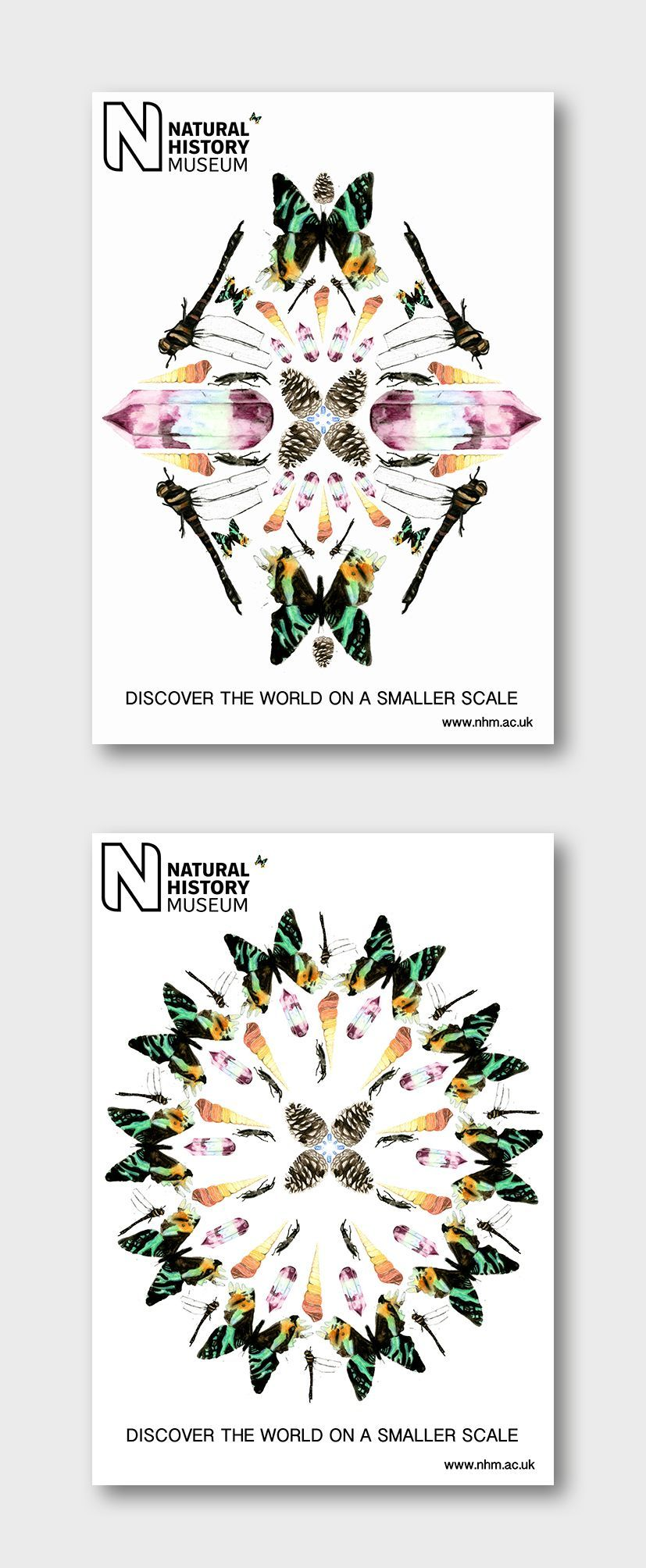 Natural History Museum Posters designed by AS student Alex S  Natural History Museum Posters designed by AS student Alex S
