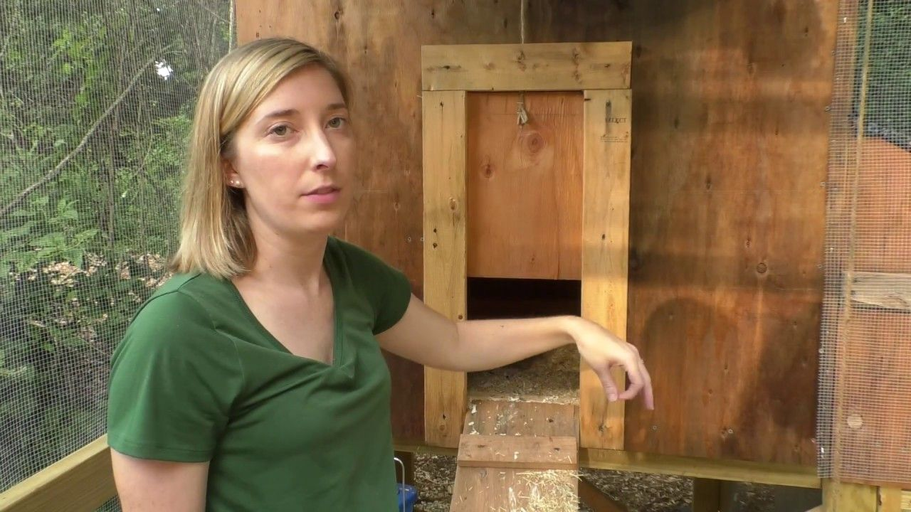 Most Efficient Chicken Coop Tour Youtube Chicken Coop Building A Chicken Coop Best Chicken Coop