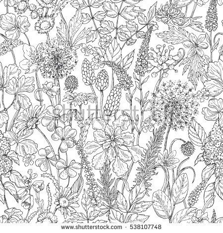 Hand Drawn Seamless Pattern With Wildflowers Black And White