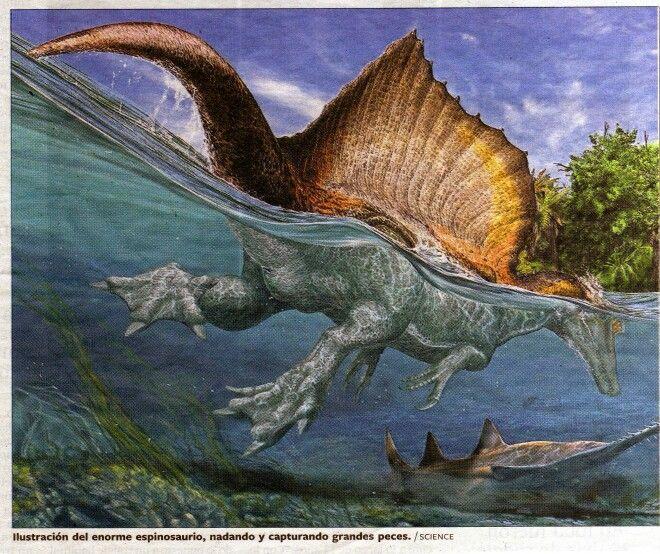 Espinosaurio | Posters | Pinterest | Dinosaurios para niños y Para niños