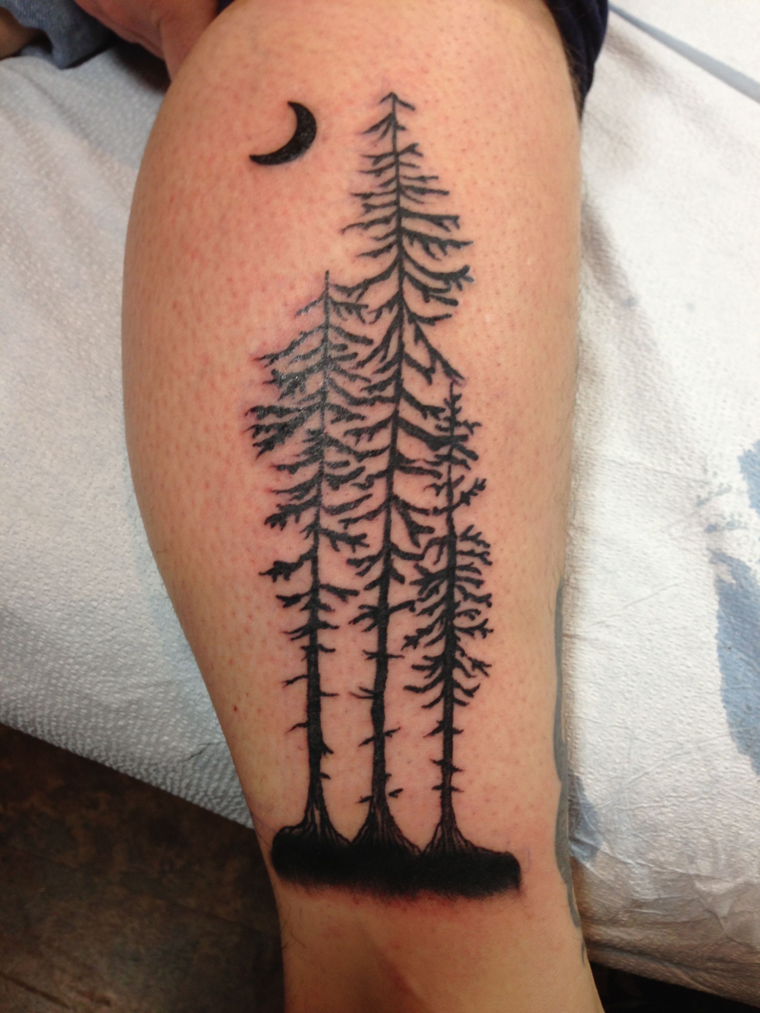 Giant Redwood tree silhouette....by Gauge Tree tattoo