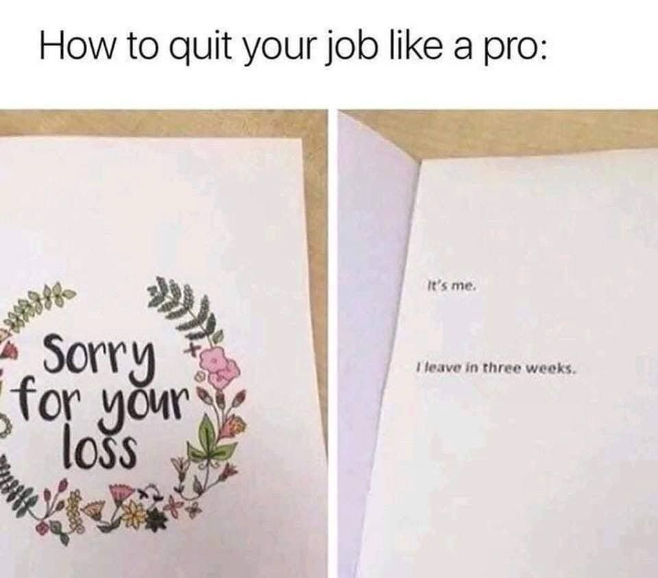Pin By Deana Gonzalez On Lol Quit Job Funny Job Memes Job Humor