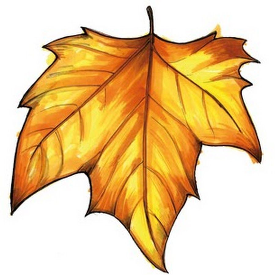 hojas de otoño para colorear - Поиск в Google | Técnicas de arte ...