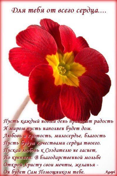 красивые открытки картинки цитаты пожелания
