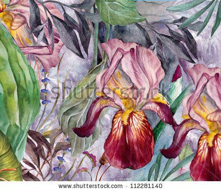 stock photo : watercolor portrait's of the iris