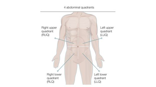 Physical Assessment Adult  Ns Physical Assessment