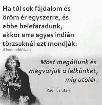 indián bölcsességek idézetek Bölcs indián mondás 😉 | Life quotes, Inspirational quotes, Quotations
