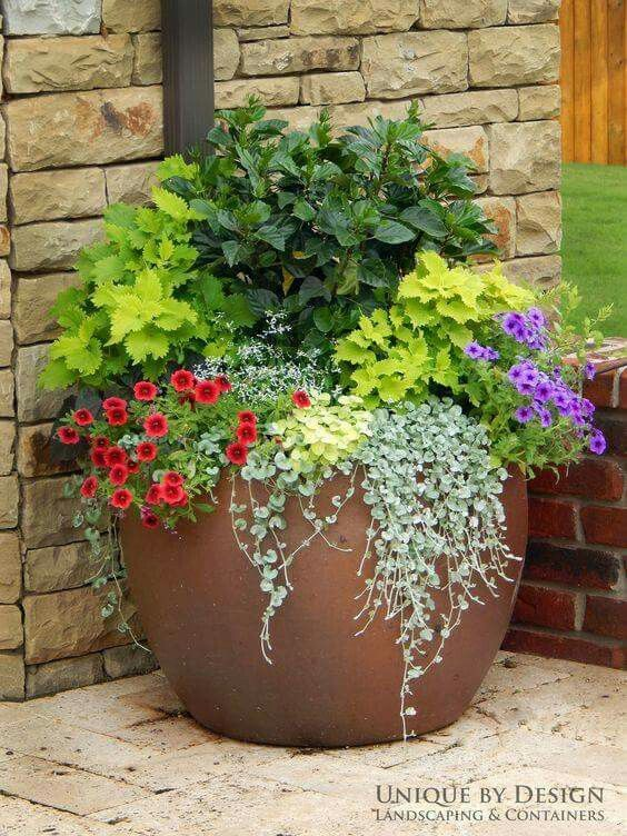 Front Porch Flower Pot Plants Container Gardening Garden