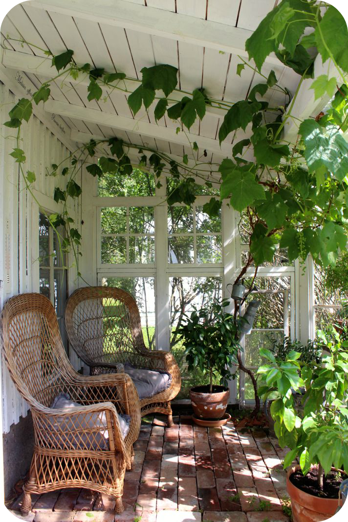 Front porch don't: lovely old brick porch being taken over by greenery...it will pull the porch down on top of itself if not contained.