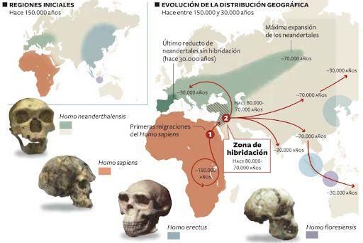 Distribució geogràfica de les espècies