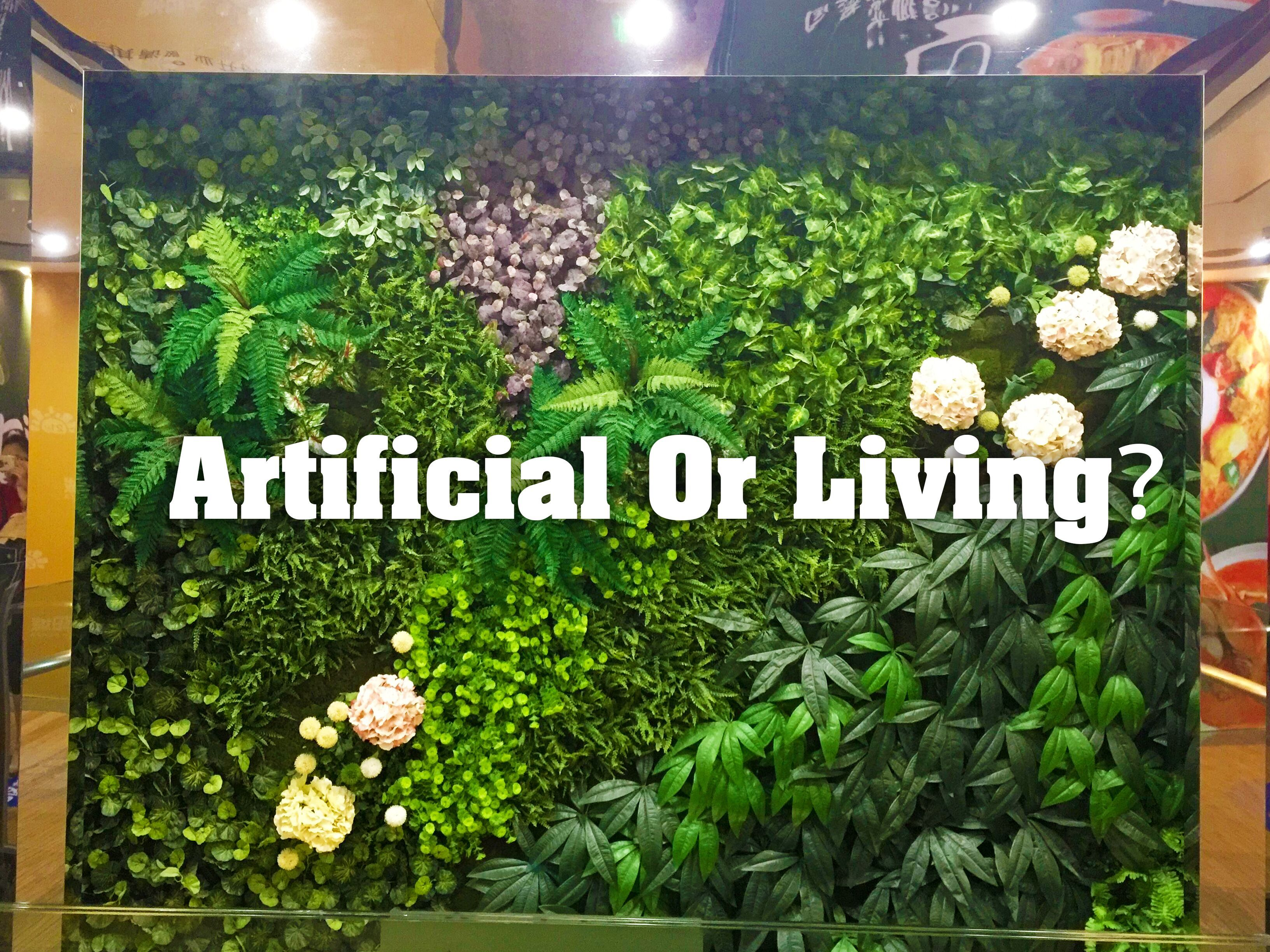 Artificial Or Living It Is Hard To Tell Now Sunwing Vertical Garden Can Be Customized And Greeeen Artificial Hedges Artificial Green Wall Artificial Plants